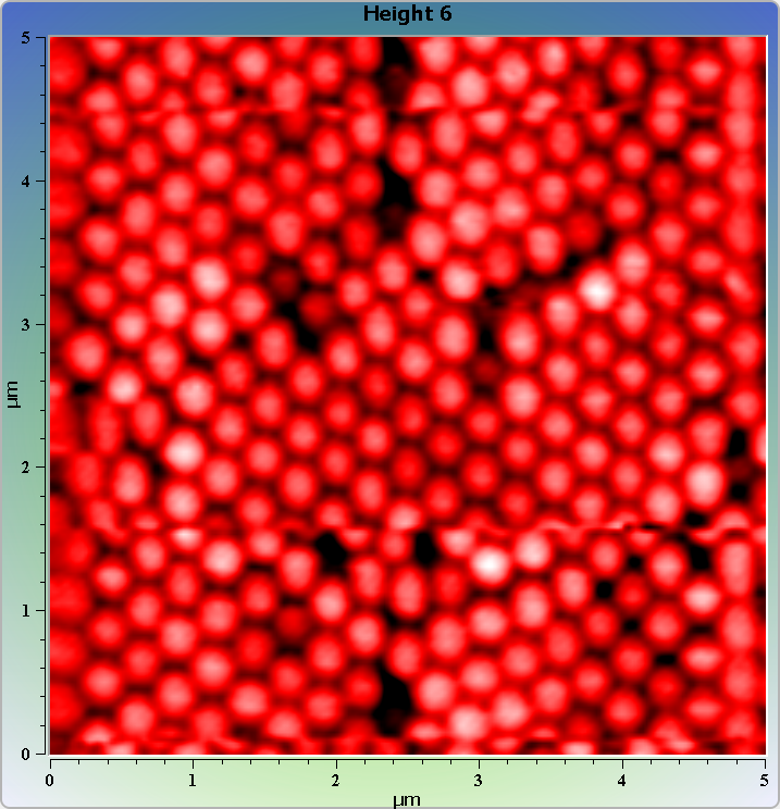 Polystyrene spheres on glass. AFM image. Topography.