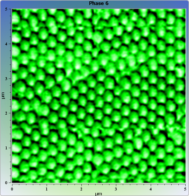Polystyrene spheres on glass. AFM image. Phase image.