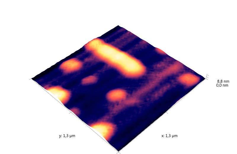 DNA-protein complexes on mica. AFM images. Semi-contact mode. Topography 3D.