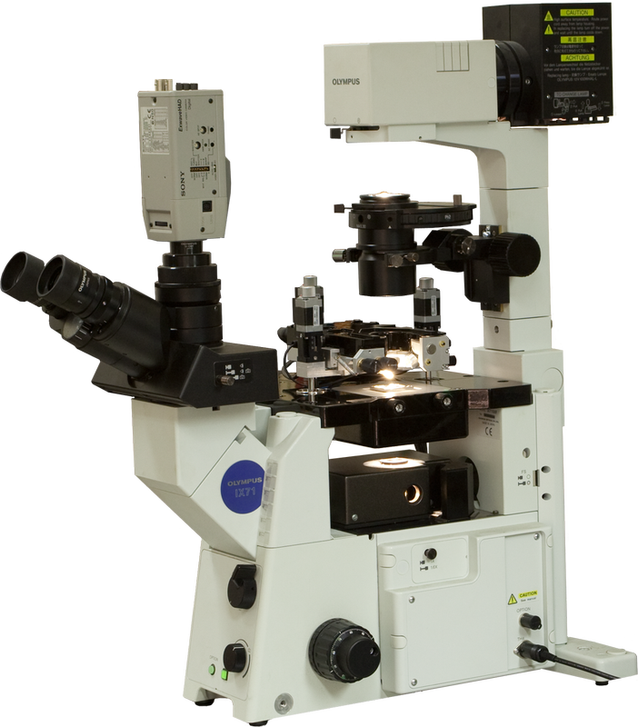 Atomic Force Microscope (AFM) Certus Optic I with inverted optical microscope (Olympus IX71)
